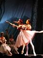 2012俄罗斯明星芭蕾舞剧院《天鹅湖》